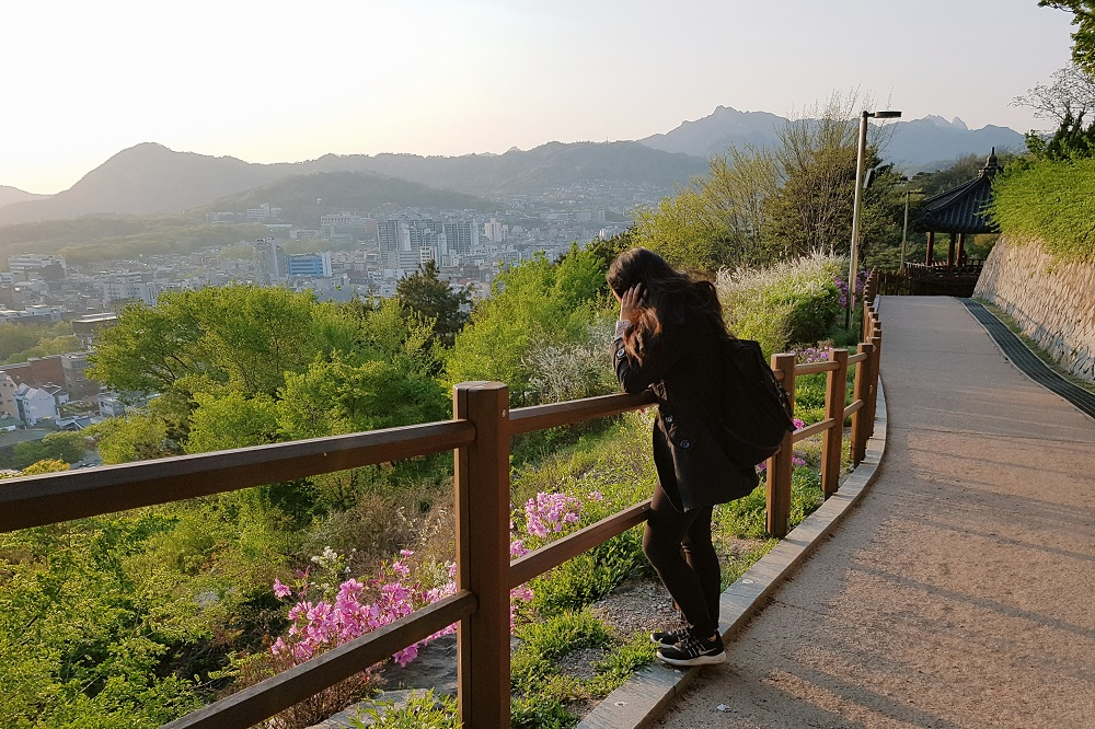 South Korea Itinerary: Seoul and Busan for 7 Days During Spring